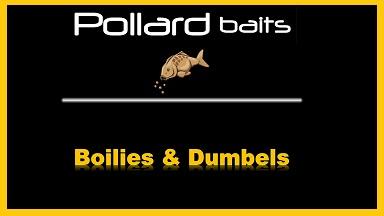 Boilies & Dumbels