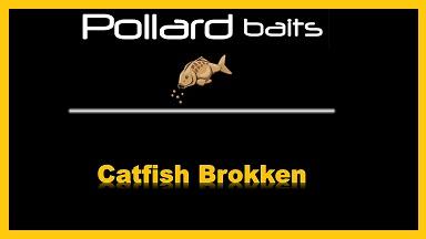 Catfish Brokken